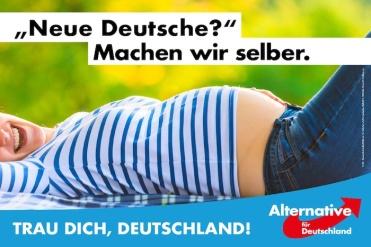 afd-plakat-neue_deutsche-700x467